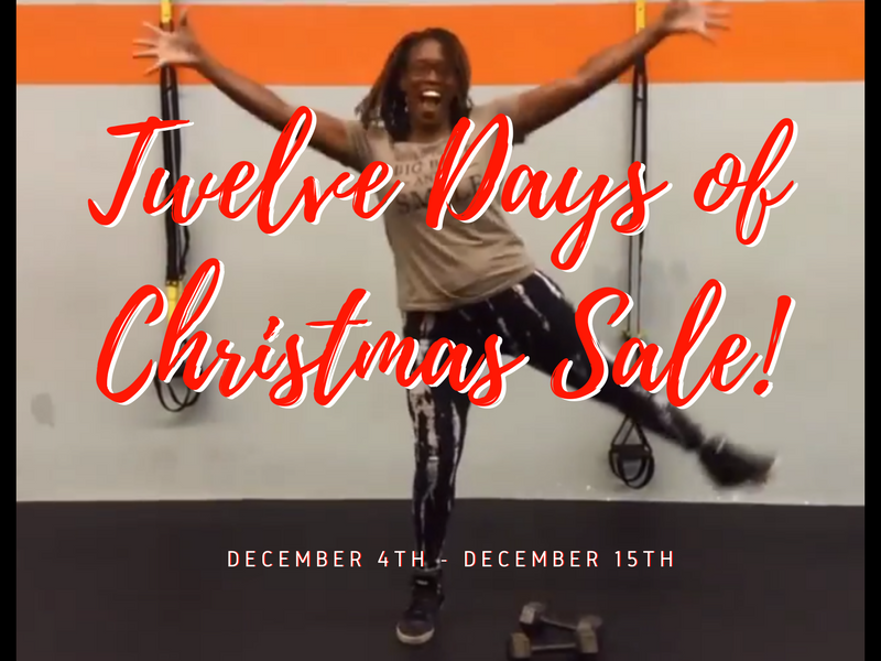 Scrolly Twelve Days of Christmas Sale - 2017
